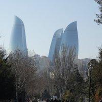 51 :: azer Zade