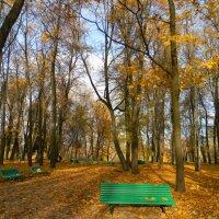 Осень в Гатчинском парке :: Ирина Михайловна