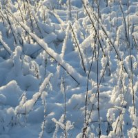 Зима :: Mariya laimite