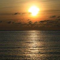 Бакланы на закате- в поиске рыбы :: valeriy khlopunov