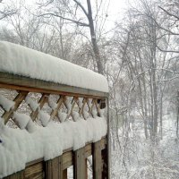 Зимне-дачное... :: Елена
