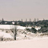 Зимове натхнення :: Наталия Рой