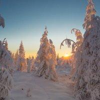 Первый рассвет в горах :: Михаил Потапов