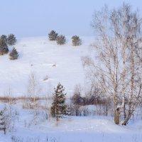 Во поле берёза стояла... :: Владимир Хиль
