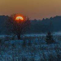 Зимний закат :: Дмитрий Царапкин