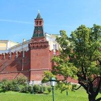 Москва.Оружейная башня Кремля. :: vadimka
