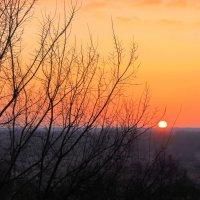 Торжественно открыв начало дня,так величаво всходит солнце! :: Валентина ツ ღ✿ღ