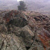 В Сарминском ущелье :: Виктор Мухин