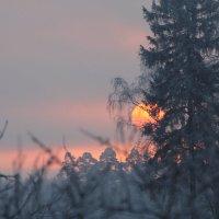 Зимний рассвет :: Андрей Андрющенко