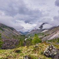 Низкая облачность над горной долиной :: Виктор Никитин