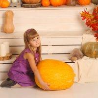 Осенний урожай! :: Олеся Богатская
