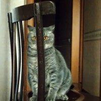 нет меня...) :: лиана алексеева