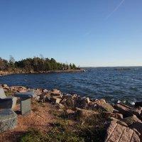 Холодный Финский залив. :: Vladimir