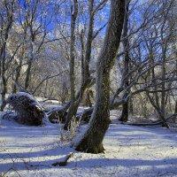 Зима в Крымских горах :: Михаил Баевский