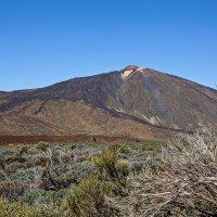 Spain 2015 Canary Tenerife-Teide 10 :: Arturs Ancans