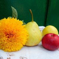 плоды осени :: Люша