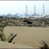 Новая жизнь пустыни :: Ахмед Овезмухаммедов