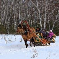 смотрю, поднимается медленно в гору... лошадка... :: Ирина
