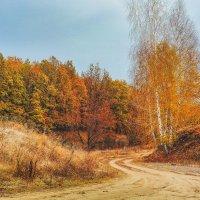 Пришла осень :: Сергей Степанов