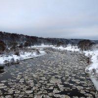 Шугоход на реке Угра. :: Владимир Щеглов