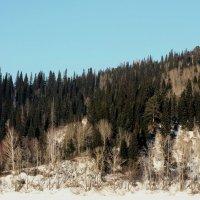 Природа :: Дмитрий Арсеньев