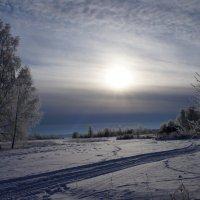 Январь :: Марина Егорова