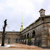 Петропавловская крепость.Территория выставок песчаных скульптур. :: Виктор Орехов