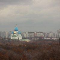 Вид  на город из Коломенского :: Анна Елишева