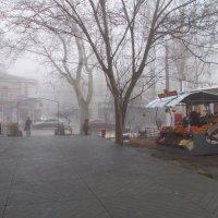 4й день последнего месяца зимы :: Александр Скамо