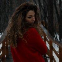 forest :: Татьяна Вылкова