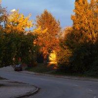Осенний вечер :: Диана Коновалова