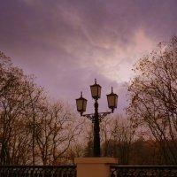 фонарь в парке :: Александр Прокудин