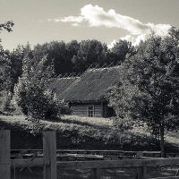Пушкинские Горы,Заозерная улица :: Любовь Вережинская