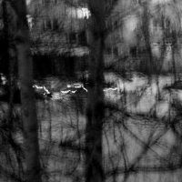 Просыпается спальный  район............ :: Валерия  Полещикова