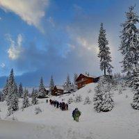 Зимний сезон :: Владимир Клюев