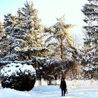 Зима в городе :: Владимир Болдырев