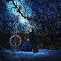 В лунном свете... :: Aine Lin