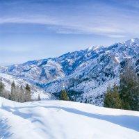 Утро в горах :: Роман Попов