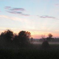 Утро на Каабоже :: Mikhail Labut