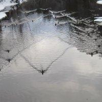 Зимние заплывы или треугольники на воде :: Маера Урусова