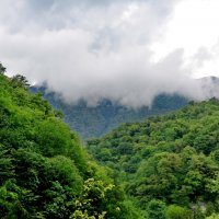 Горы Абхазии :: Светлана