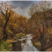 Река Лыбидь,Киев :: klara Нейкова