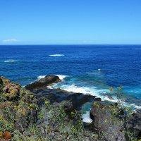 Атлантика о.Тенерифе :: Paparazzi