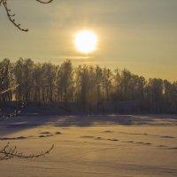 Утро на озере :: Николай Полыгалин