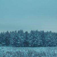 Холод :: Андрей Волков