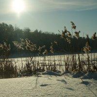 Озеро зимой :: Фролов Владимир Александрович