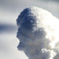 минискульптура из снега :: Александр Ефремов