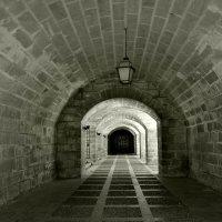 Из света в тень :: Ирина Falcone