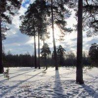 Зима на исходе :: Валерий Струк