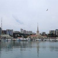 Морской порт в пасмурную погоду :: valeriy khlopunov